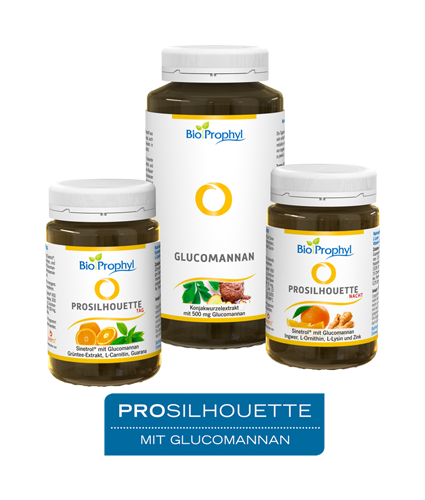 ProSilhouette® Programm