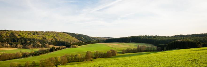 Landschaftsbild BioProphyl